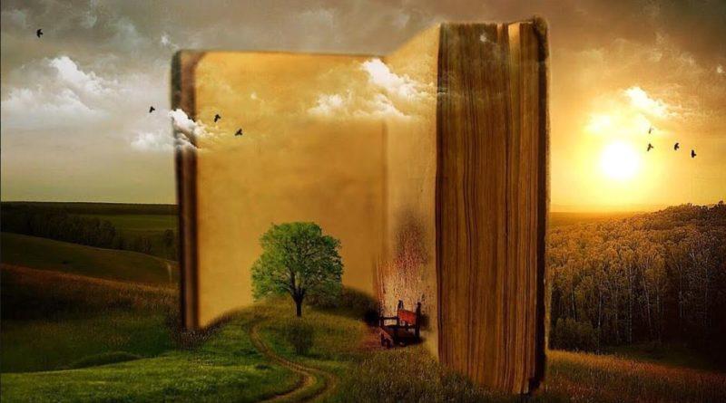 """"""" Cosa sarebbe il mondo senza libri? """"  riflessioni della scrittrice Cristina Alessandro"""