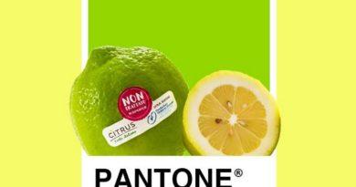Giallo Limone? NO, verde!