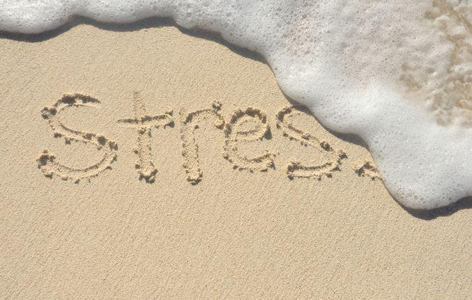 """""""Buone vacanze"""" riflessioni della scrittrice Cristina Alessandro."""