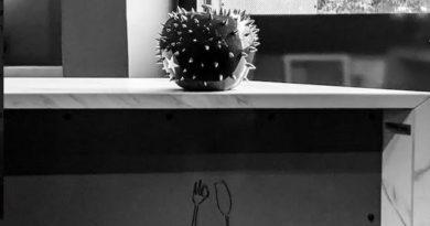 """""""Ceramitica"""" in mostra al ristorante dello Chef Alessandro Borghese."""